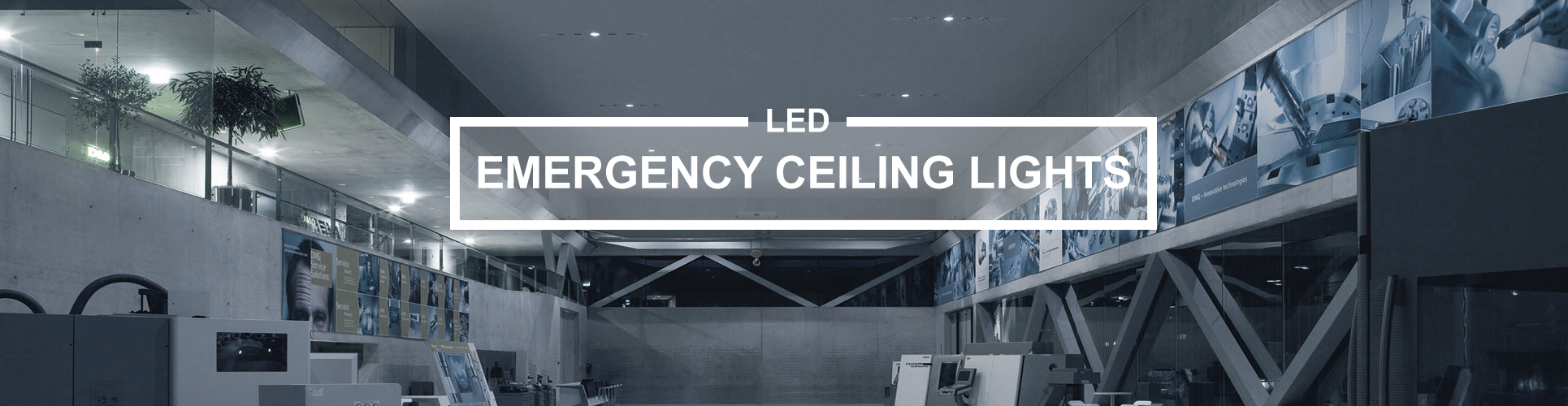 Emergency ceiling lights